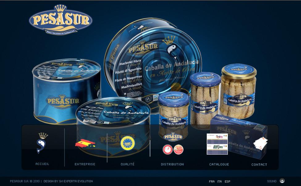 Création site internet en Espagne pour PESASUR S.A.